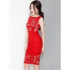 Đầm Ôm Ren Cao Cấp - 2081