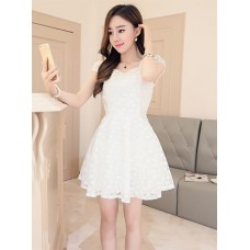 Đầm Xòe Ren Hoa Mai - 137